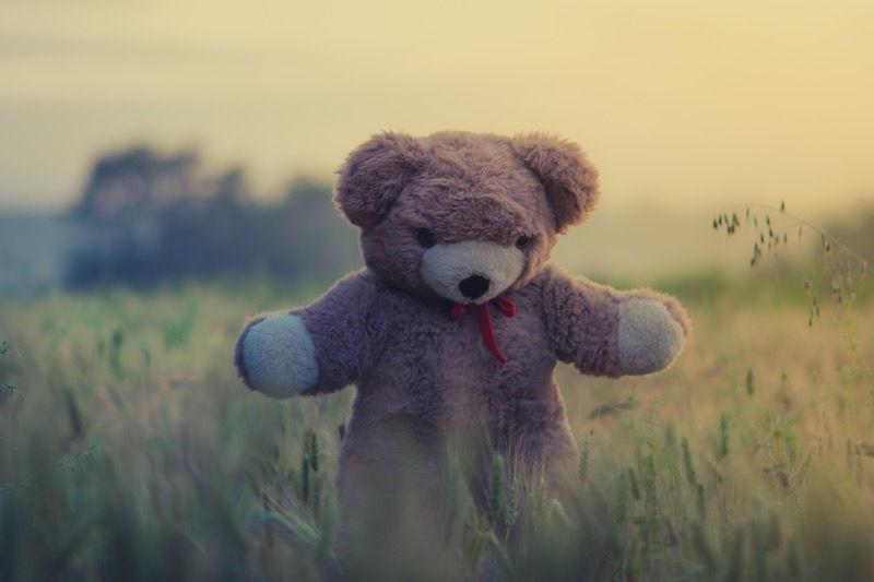 patung beruang