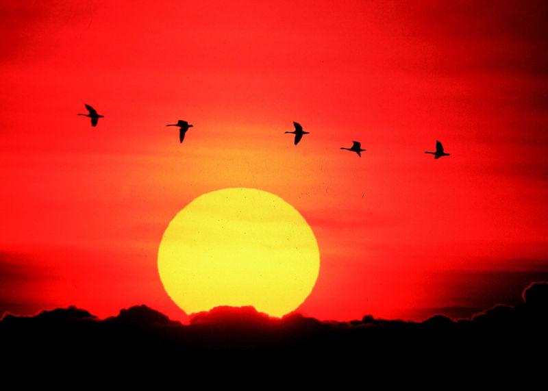 Matahari-turun