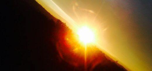 Mataharii